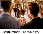 group of young people toasting... | Shutterstock . vector #1205835199
