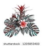 tropical plant. watercolor... | Shutterstock . vector #1205853403