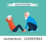 cute active elderly woman...   Shutterstock .eps vector #1205855863