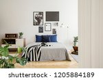 white wooden commode next to... | Shutterstock . vector #1205884189