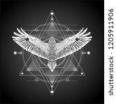 alchemy.masonic symbol... | Shutterstock .eps vector #1205911906