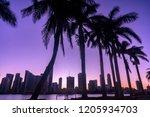 dramatic miami skyline at dusk... | Shutterstock . vector #1205934703
