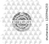obedient grey emblem with cube... | Shutterstock .eps vector #1205946253