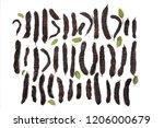 carob fruits assortment...   Shutterstock . vector #1206000679