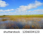 Everglades National Park In...
