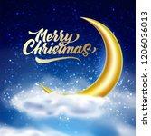 merry christmas lettering on... | Shutterstock .eps vector #1206036013