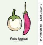 eggplant   hand drawn... | Shutterstock .eps vector #1206036049