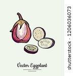 eggplant   hand drawn... | Shutterstock .eps vector #1206036073