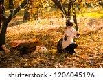 girl in halloween holiday is... | Shutterstock . vector #1206045196