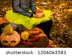 scary painted takwa not... | Shutterstock . vector #1206063583