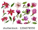 set of separate elements from... | Shutterstock . vector #1206078550