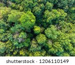 aerial above view of deciduous... | Shutterstock . vector #1206110149