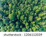 aerial top view of deciduous... | Shutterstock . vector #1206112039