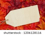message for the fall season ... | Shutterstock . vector #1206128116
