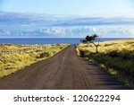 Постер, плакат: Straight gravel road and