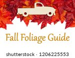 fall foliage guide text with... | Shutterstock . vector #1206225553