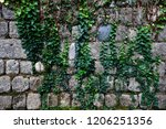 ancient wall of gray stones... | Shutterstock . vector #1206251356