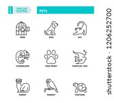 line icons about pets | Shutterstock .eps vector #1206252700