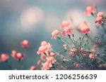 autumn marigold background | Shutterstock . vector #1206256639