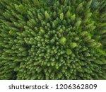 aerial veiw of green forest.... | Shutterstock . vector #1206362809