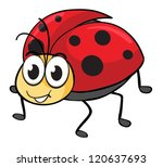 illustration of a ladybug on a... | Shutterstock .eps vector #120637693
