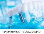 dentist dental teeth teaching...   Shutterstock . vector #1206399340