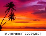 Stock photo two palm trees silhouette on sunset tropical beach 120642874