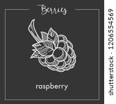 sweet ripe delicious raspberry... | Shutterstock .eps vector #1206554569