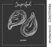 delicious natural oyster in... | Shutterstock .eps vector #1206554686