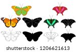set of beautiful multicolored... | Shutterstock .eps vector #1206621613