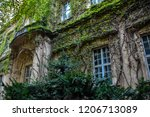 wall of the castle grown with... | Shutterstock . vector #1206713089