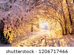 winter snow forest trees tunnel ... | Shutterstock . vector #1206717466