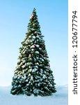 Big Christmas Tree On Snow ...