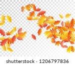 oak  maple  wild ash rowan... | Shutterstock .eps vector #1206797836