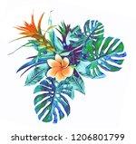 tropical plant. watercolor... | Shutterstock . vector #1206801799