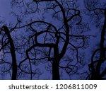 Dark Silhouettes Of Strangely...