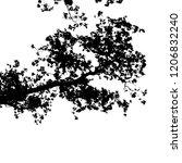 realistic maple tree silhouette ... | Shutterstock .eps vector #1206832240
