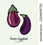 eggplant   hand drawn... | Shutterstock .eps vector #1206898720