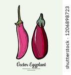 eggplant   hand drawn... | Shutterstock .eps vector #1206898723