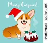 corgi dog in christmas santa... | Shutterstock .eps vector #1207048186