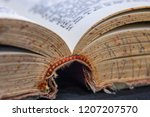 close up macro old book spine...   Shutterstock . vector #1207207570
