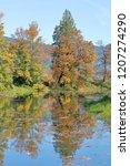 vertical view of vibrant fall... | Shutterstock . vector #1207274290