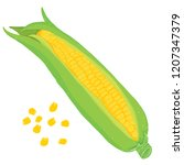 vector painterly set with corn... | Shutterstock .eps vector #1207347379