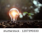 lightbulb and small tree growth ... | Shutterstock . vector #1207390333