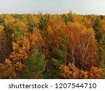 top view of beautiful autumn... | Shutterstock . vector #1207544710