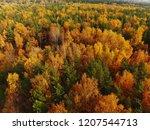top view of beautiful autumn... | Shutterstock . vector #1207544713