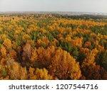 top view of beautiful autumn... | Shutterstock . vector #1207544716