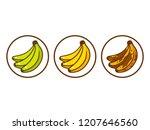 banana ripeness illustration.... | Shutterstock . vector #1207646560
