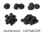blackberry isolated on white... | Shutterstock . vector #1207681339