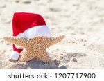 close up of starfish in beach... | Shutterstock . vector #1207717900